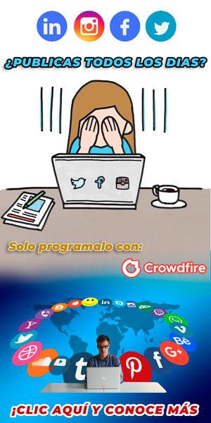 puntacanajjdesign.com Redes Sociales